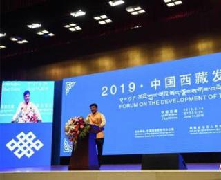 """西藏發展論壇嘉賓:抓住""""一帶一路""""機遇 加快開放發展"""