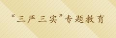"""""""三嚴三實""""專題教育"""